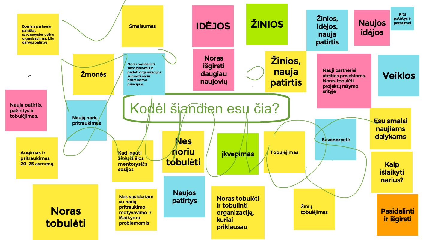 Tarptautiniai projektai